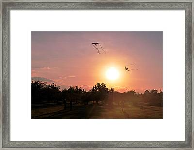 Kites Flying In Park Framed Print