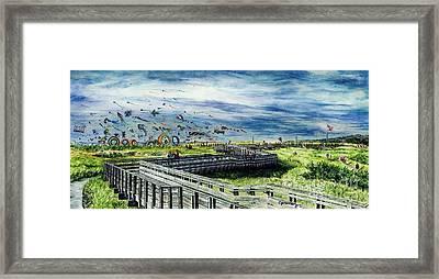 Kites Galore Framed Print