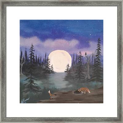 Kits In Play Framed Print