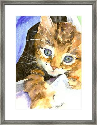 Kitten In Blue Framed Print