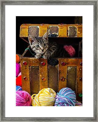 Kitten In Treasure Box Framed Print by Garry Gay