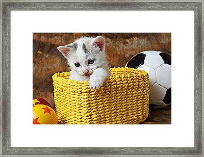 Kitten In Yellow Basket Framed Print by Garry Gay