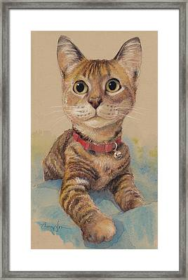Kitten On The Loose Framed Print by Tracie Thompson