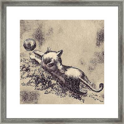 Kitten Playing With Ball Framed Print