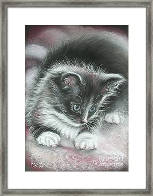 Kitten Framed Print by Valentina Vassilieva