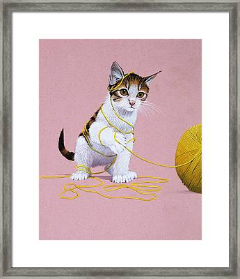 Kitten With Ball Of Wool Framed Print by English School