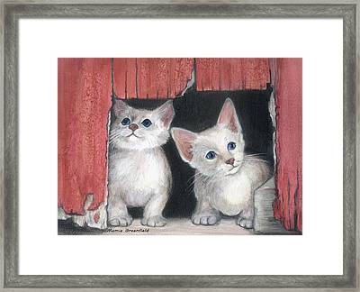 Kittens And Red Barn Framed Print