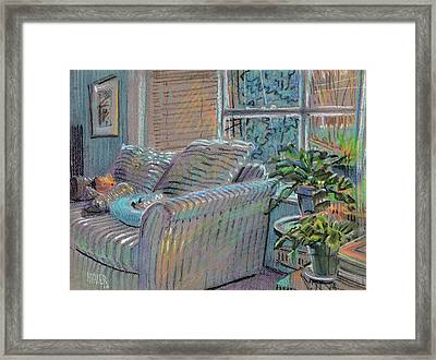 Kittens And The Bear Framed Print by Donald Maier