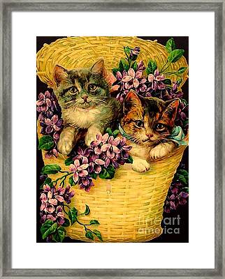 Kittens With Violets Victorian Print Framed Print