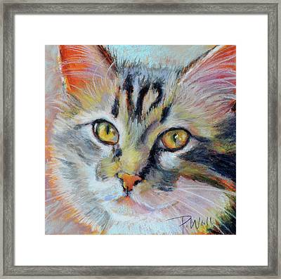 Kitters II Framed Print