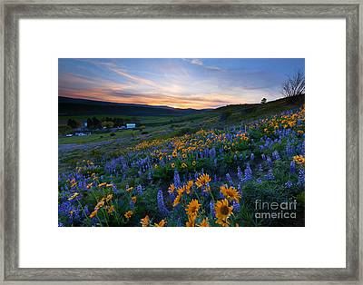 Kittitas Spring Sunset Framed Print
