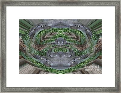 Kitty Abstract  Framed Print