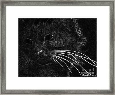 Kitty Framed Print by Emily Kelley