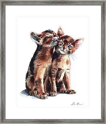 Kitty Kisses Abyssinian Kittens Brother Sister Framed Print