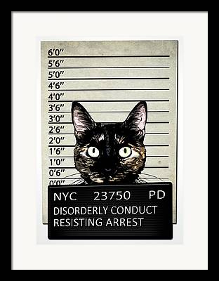 Arrested Framed Prints