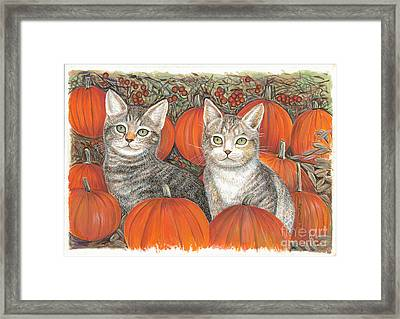 Kittys And Pumpkins Framed Print