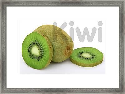Kiwi Framed Print by Daniel Hagerman
