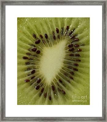 Kiwi Macro Framed Print