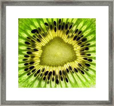Kiwi Up Close Framed Print by June Marie Sobrito