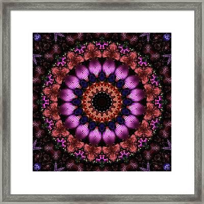 Klassy Kaleidoscope Framed Print by Lyle Hatch