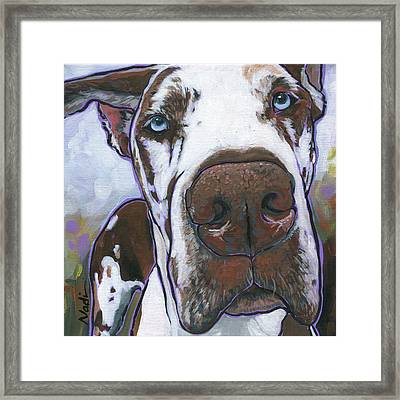 Klymaxx Framed Print by Nadi Spencer