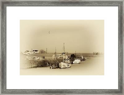 Knapps Narrows Tilghman Island Framed Print by Bill Cannon