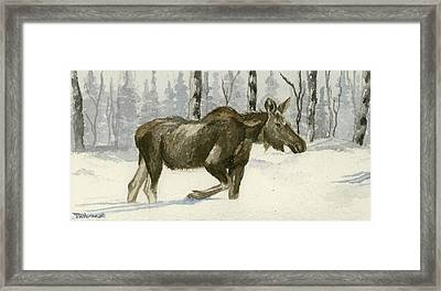 Knee Deep In Snow Framed Print by Tracey Hunnewell