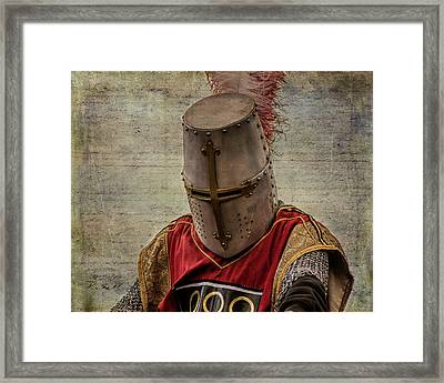 Framed Print featuring the photograph Knight In Armor by Mary Hone
