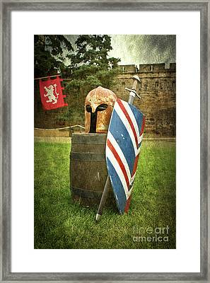 Knight Vision Framed Print by Terri Waters