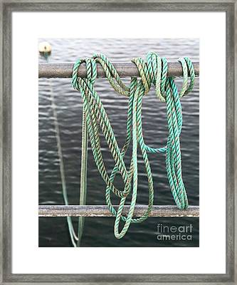 Framed Print featuring the photograph Knot Of My Warf II by Stephen Mitchell