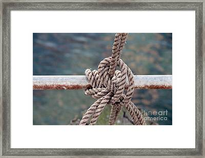 Framed Print featuring the photograph Knot Of My Warf by Stephen Mitchell
