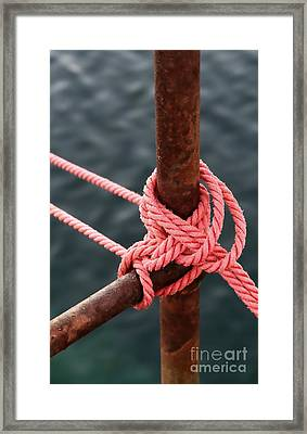 Framed Print featuring the photograph Knot On My Warf IIi by Stephen Mitchell