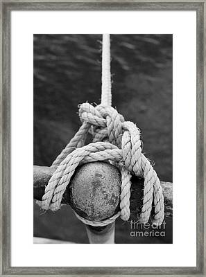 Framed Print featuring the photograph Knot On My Warf Iv by Stephen Mitchell
