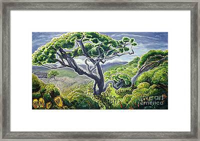 Koaia Framed Print by Fay Biegun - Printscapes
