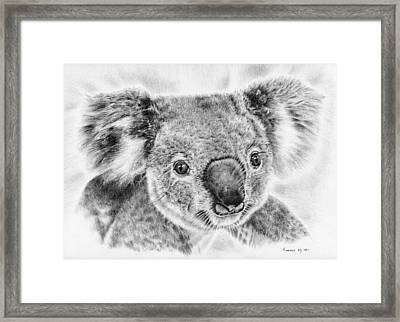 Koala Newport Bridge Gloria Framed Print