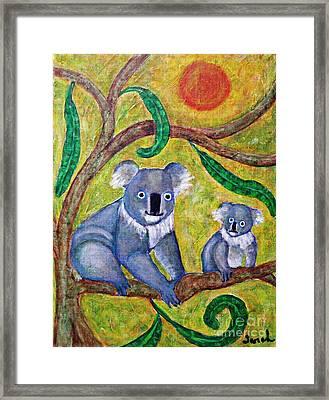 Koala Sunrise Framed Print by Sarah Loft