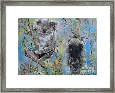 Koalas Framed Print