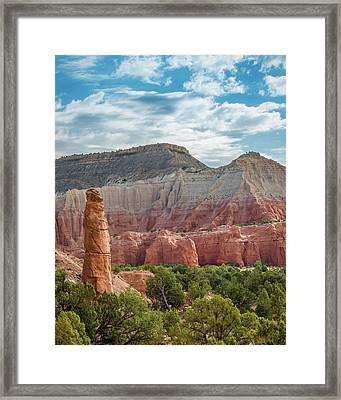 Kodachrome Postcard Framed Print