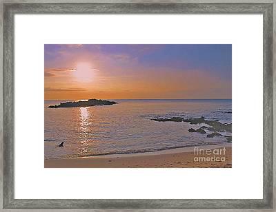 Kohala Sunset Framed Print