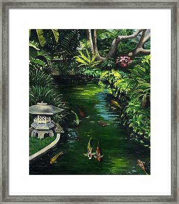 Koi Calm Framed Print