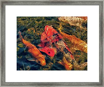 Koi Fish Fresco One Framed Print by Tony Grider