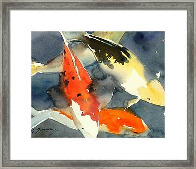 Koi Fish No.6 16x20 Framed Print
