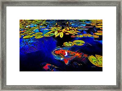 Koi In A Pond Of Water Lilies Framed Print
