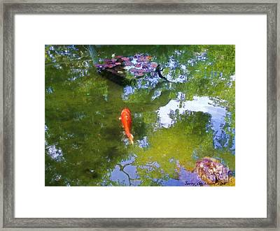 Koi In Reflective Water Garden Framed Print by Jerry Grissom