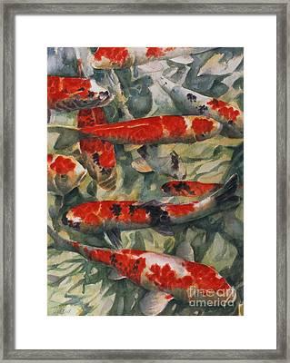 Koi Karp Framed Print