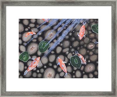 Koi Polloi Framed Print by Nicole Goetting