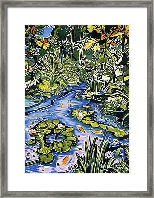 Koi Pond Framed Print by Fay Biegun - Printscapes