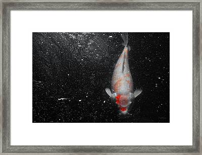 Framed Print featuring the photograph Koi Approach by Deborah  Crew-Johnson