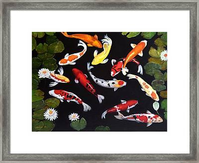 Koi V Framed Print