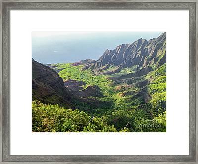 Kokee Park Framed Print